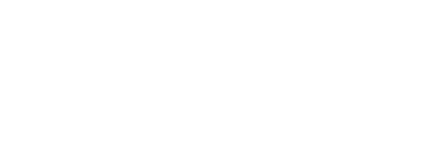 Stride Running Clinic Logo